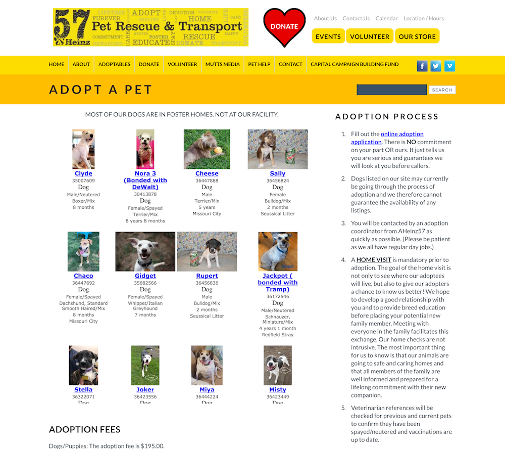 AHeinz57 old adopt page